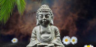Buddha Flowers Margaritas Figurine  - AMDUMA / Pixabay