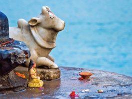 Murti India Travel Asia Holy Cow  - Devanath / Pixabay