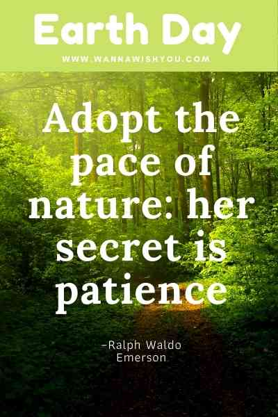 Earth Day quotes: Adopt the pace of nature her secret is patience