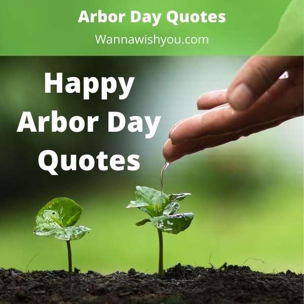 Arbor Day Quotes