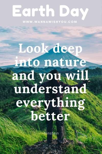 Earth Day Quote : Look deep into nature and you will understand everything better (3)