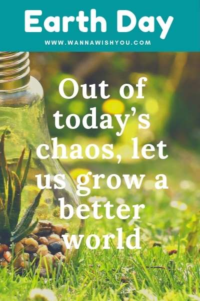Earth Day Quotes : Out of today's chaos, let us grow a better world