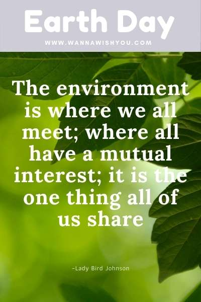 Earth Day Quotes : The environment is where we all meet; where all have a mutual interest; it is the one thing all of us share