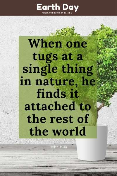 Earth Day Quote : When one tugs at a single thing in nature, he finds it attached to the rest of the world (1)