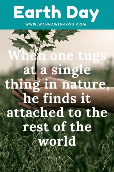 Earth Day Quotes : When one tugs at a single thing in nature, he finds it attached to the rest of the world